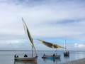 Dhows at Pansy Island