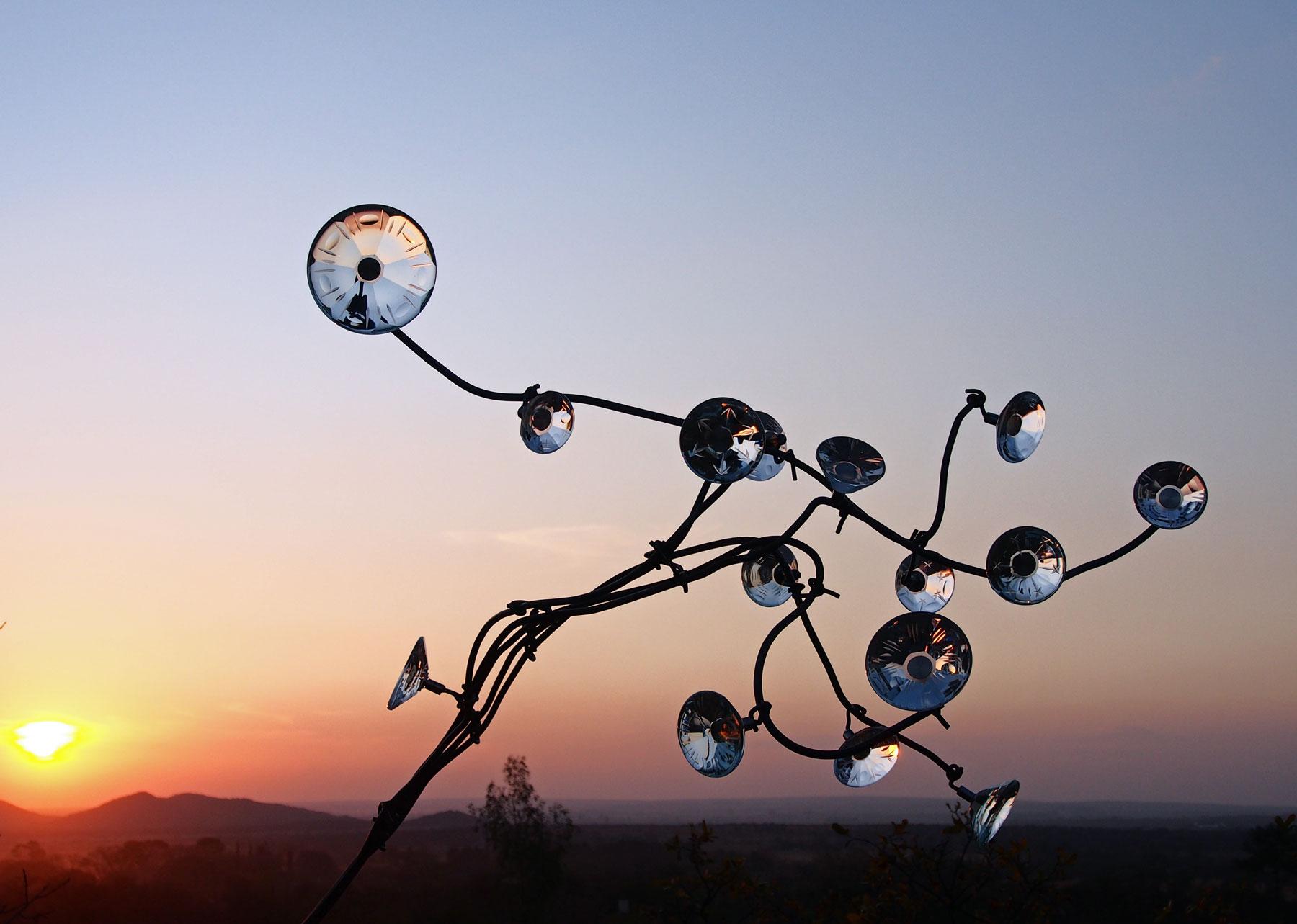 Blossom-sunset